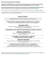 Job Resume Examples No Experience Template Idea 2014 Free Example