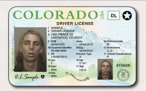 Cow News Stoners Courier To Issued Colorado - Western Texters Driver's Pie The New And Licenses Being