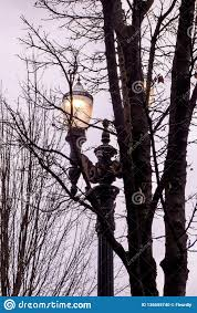 Pearl Street Lights Illuminated Street Lamp Pearl District Portland Oregon