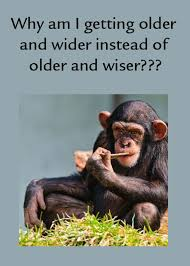Funny Age Quotes Enchanting Funny Getting Older Quotes