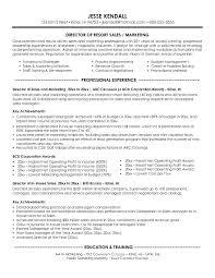 Sales Resume Objective Stunning 4023 Resume Objective For Marketing Resume Objectives Examples For