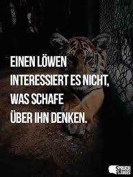 Sprüche Zum Thema Löwe Und Löwen Spruch Des Tages