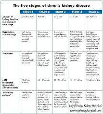 Kidney Creatinine Chart Kidney Characteristic Creatinine Variety