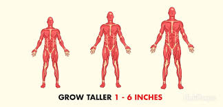 Image result for Increase height fast naturally