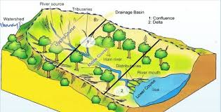 Drainage Patterns The Drainage System Drainage Patterns In India Civilspro Ias