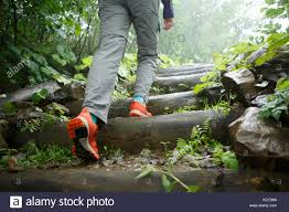 Walking Logs Photo Of Man Walking On Ladder Of Logs Stock Photo 163412445 Alamy