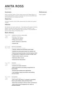 Customer Service Associate Resume samples