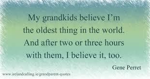 Grandchildren Quotes Cool Grandparent Quotes And Jokes Ireland Calling