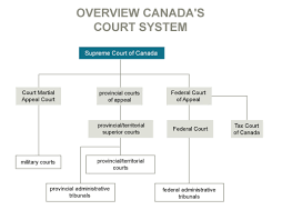 United States Court System Flow Chart Canadian Judicial Council