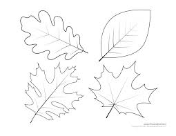 Coloring Template Jungle Leaf Coloring Pages Jungle Leaves