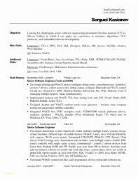 Plain Text Resume Sample Elegant Text Format Resume How To Create A
