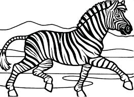 zebra coloring book zebra coloring book great zebra coloring pages graphic zebra coloring book pages zebra