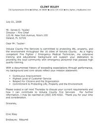 Online Application Cover Letter Examples Topresumeletter