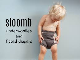 Giveaway About Sloomb Bamboo Fleece Fitted Diaper