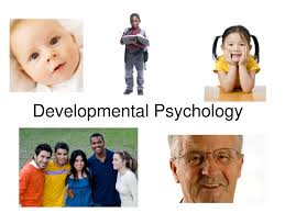 developmental psychology iresearchnet