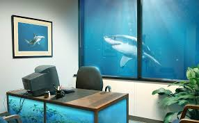office fish tank. i see your fish tank cubicle and raise you a shark office s