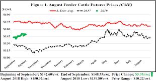September Florida Cattle Market Price Watch Panhandle