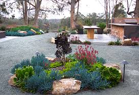 View in gallery Xeriscaping in a lush backyard