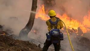Battalion Chief fired for forgetting about crew on wildfire