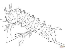 Small Picture Hubbards Silkmoth Caterpillar coloring page Free Printable