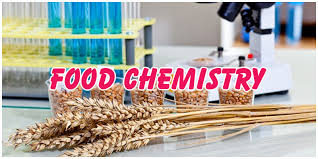 Image result for food chemistry