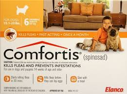 comfortis for dogs. Fine Comfortis On Comfortis For Dogs
