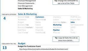 Non Profit Balance Sheet Template Excel - Forolab4.co