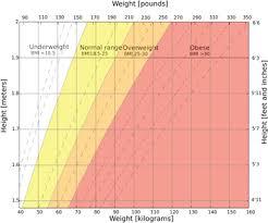 What Is Morbid Obesity Definition Symptoms Treatment