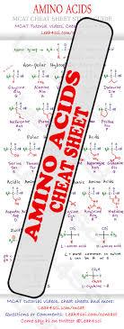 Mcat Amino Acid Chart Amino Acid Chart Mcat Cheat Sheet Study Guide