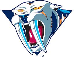 Nashville predators Logos
