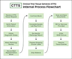 Service Request Flow Chart Ctts Process Flow Charts Pathology
