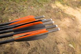 How To Pick The Right Crossbow Arrow For Any Scenario