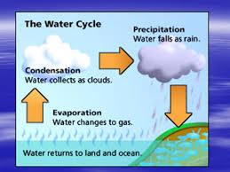 Precipitation Cloud Lab Investigation 1 How Precipitation Forms