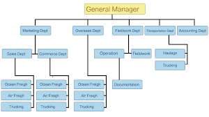 Marketing Department Organizational Chart Organizational Structure Of The Confectionery Fasrevolution