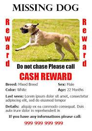 Lost Pet Flyer Maker Lost Dog Flyer Templates With Lost Pet Flyer Maker Samples Of 11