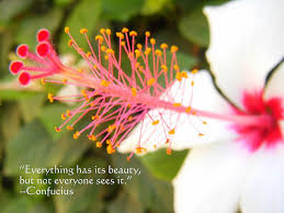 you are true beauty beauty is in everything has its beauty ""