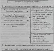 Планирование контрольных мероприятий Организация финансового  Еще по теме Планирование контрольных мероприятий