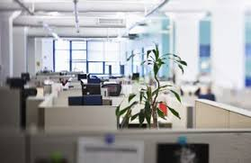 workspace office. modern office furnishings can be comfortable functional and affordable workspace i