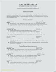Sample Resume Business Owner Amazing Business Sample Resume Simple Resume Template Format