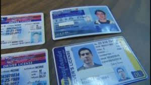 The Fake Driver License importance