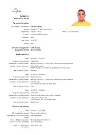 Curriculum Vitae European Format Word Malawi Research