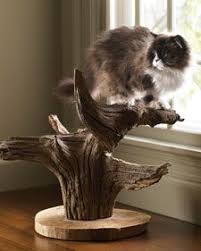 beautiful scratching post and perch for cats so much better than those ugly carpet poles cat lovers 27 diy solutions