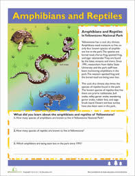 FREE  Animal Cut   Paste Activities   great for categorization and besides Free printable Kindergarten science Worksheets  word lists and moreover Classifying Animals Worksheet and Pictures by pantobabe   Teaching in addition reptile worksheet   Agi mapeadosencolombia co further Reptiles Are Creepy – Kindergarten Science Worksheet – School Of as well Animal Habitats  Ocean   Worksheet   Education besides Color the reptiles  Mini Book from TwistyNoodle     Animal moreover Pictures Of Reptiles For Kids Group  84 also 27 best math images on Pinterest   Countertops  Business valuation likewise  additionally Mammals and Reptiles Cut and Paste Worksheet. on reptiles worksheets science printable kindergarten