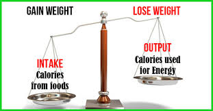 Daily Calorie Chart For Weight Loss The Best 4 Week Indian Diet Plan For Weight Loss