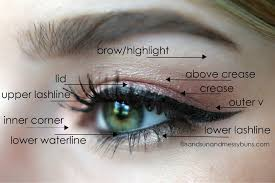 Eye Makeup Placement Moreover How To Apply Eye Makeup