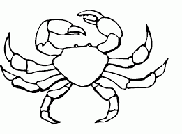 Small Picture Hermit Crab Coloring Page Coloring Home