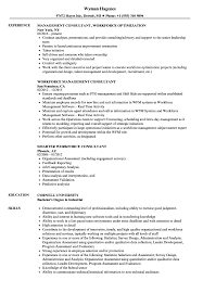 Workforce Consultant Resume Samples | Velvet Jobs