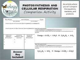 photosynthesis and cellular respiration comparison activity with answer key by biologydomain teaching resources tes