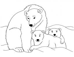 Small Picture Printable Polar Bear Coloring Page Animal Coloring Pages