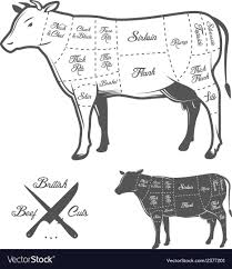 Cow Meat Chart British Butcher Cuts Of Beef Diagram